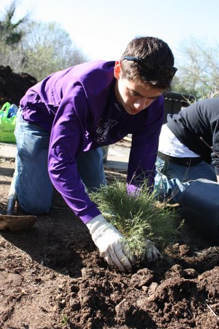 volunteer-planting-austin-trail